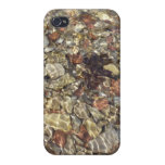 Pebbles in Taylor Creek iPhone 4 Case