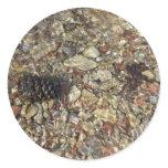 Pebbles in Taylor Creek Sticker