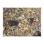Pebbles in Taylor Creek Water Nature Photography Canvas Print