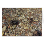 Pebbles in Taylor Creek Water Nature Photography Card