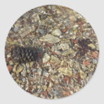 Pebbles in Taylor Creek Water Nature Photography Classic Round Sticker