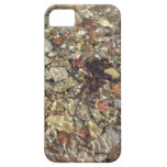 Pebbles in Taylor Creek Water Nature Photography iPhone SE/5/5s Case