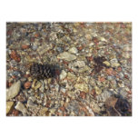 Pebbles in Taylor Creek Water Nature Photography Photo Print