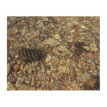 Pebbles in Taylor Creek Water Nature Photography Wood Wall Art