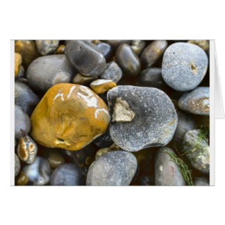 pebbles odd one card