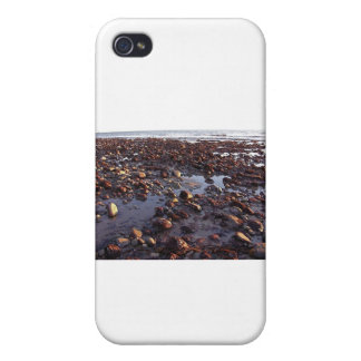 Pebbles on the Beach iPhone 4 Covers
