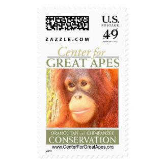 Pebbles Postage Stamp
