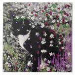 Pecas en flores I - gatito blanco negro del smokin Azulejo