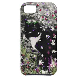 Pecas en flores I - gato del gatito de Tux iPhone 5 Funda