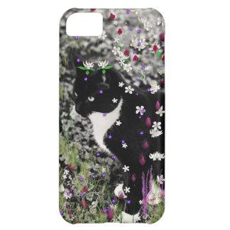 Pecas en flores I - gato del gatito del smoking Funda Para iPhone 5C