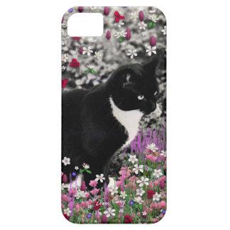 Pecas en flores II - gato blanco y negro de Tux iPhone 5 Funda