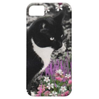 Pecas en flores II, gato blanco y negro del iPhone 5 Case-Mate Protector