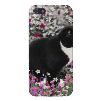 Pecas en flores II - gato del gatito de Tux iPhone 5 Carcasas