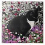 Pecas en flores II - gato del gatito del smoking Azulejo Ceramica