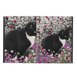 Pecas en flores II, gato del gatito del smoking