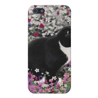 Pecas en flores II - gato del gatito del smoking iPhone 5 Coberturas