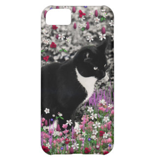 Pecas en flores II - gato del gatito del smoking Funda Para iPhone 5C