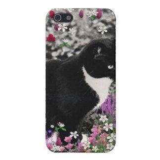 Pecas en flores II - gato del gatito del smoking iPhone 5 Carcasas