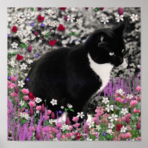 Pecas en flores II - gato del gatito del smoking Impresiones