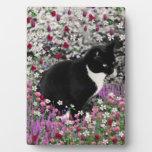Pecas en flores II - gato del gatito del smoking Placas Con Foto