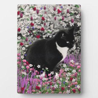 Pecas en flores II - gato del gatito del smoking Placa Para Mostrar