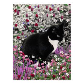 Pecas en flores II - gato del gatito del smoking Postales