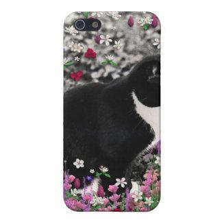 Pecas en flores II - gato del smoking iPhone 5 Protector