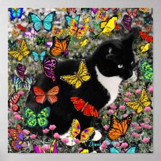 Pecas en las mariposas - gatito del smoking póster