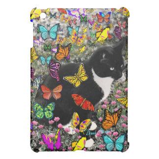 Pecas en las mariposas - gato del gatito de Tux