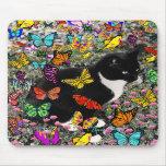 Pecas en las mariposas - gato del gatito de Tux Tapetes De Ratón