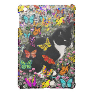 Pecas en mariposas I, gato del gatito de Tux