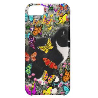 Pecas en mariposas I, gato del gatito de Tux Funda Para iPhone 5C