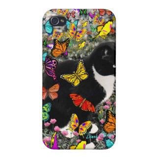 Pecas en mariposas I, gato del gatito de Tux iPhone 4/4S Fundas