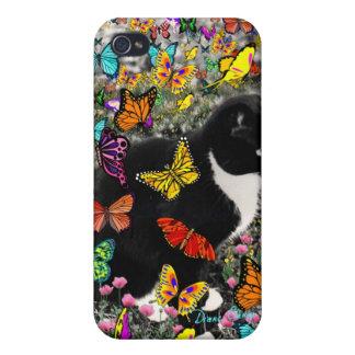 Pecas en mariposas I, gato del gatito de Tux iPhone 4 Fundas