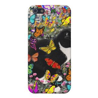 Pecas en mariposas I, gato del gatito de Tux iPhone 5 Funda