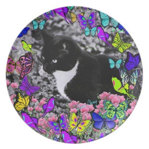 Pecas en mariposas II - gato blanco y negro Plato De Cena