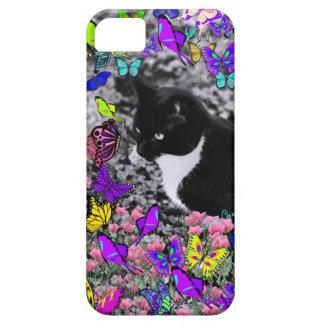 Pecas en mariposas II - gato del gatito de Tux iPhone 5 Fundas