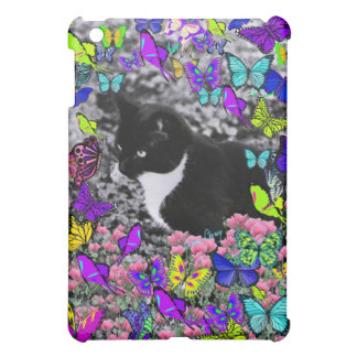 Pecas en mariposas II - gato del smoking