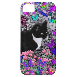 Pecas en mariposas III, gato del gatito de Tux iPhone 5 Fundas