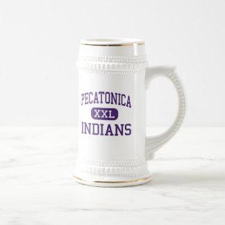 Pecatonica - indios - alto - Pecatonica Illinois Jarra De Cerveza