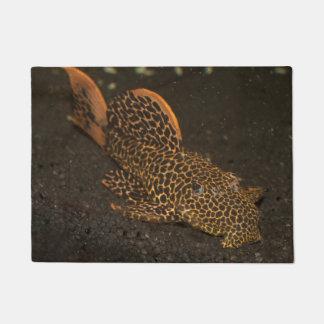 Peckoltia Compta Doormat