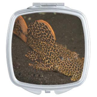 Peckoltia Compta Makeup Mirror