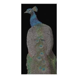 pecock vertical ( digital image ) card