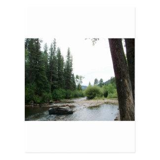Pecos Wilderness, New Mexico Postcard
