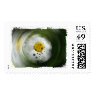 Peculiar Daisy; No Text Postage Stamps