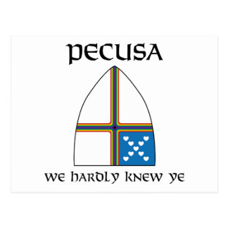 PECUSA we hardly knew ye Postcard