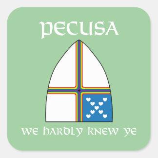 PECUSA we hardly knew ye Square Sticker
