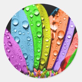 Pedales de la flor del arco iris pegatina redonda