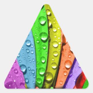 Pedales de la flor del arco iris pegatina triangular