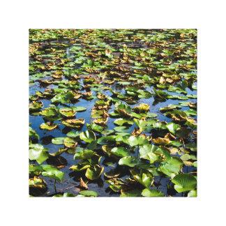 Pedales y hoja del lago impresiones en lona estiradas